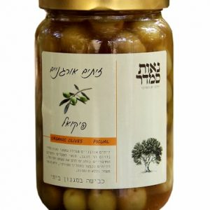Organic olives Picual