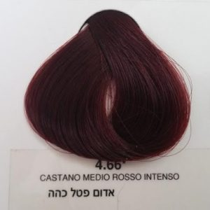 צבע 4.66 – סדרת אדום אינטנסיבי צבע אדום פטל כהה