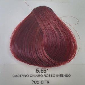 צבע 5.66 – סדרת אדום אינטנסיבי אדום פטל